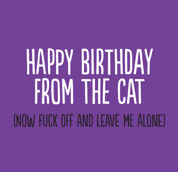 Now fuck off an dleave me alone - rude birthday card from the cat