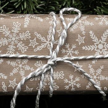 Christmas present main banner for best Christmas facts